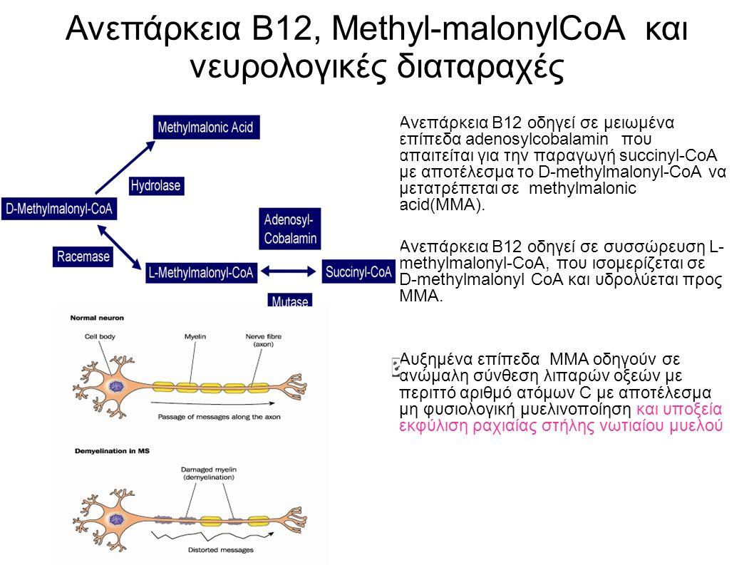 Ανεπάρκεια Β12, Methyl-malonylCoA και νευρολογικές διαταραχές Ανεπάρκεια Β12 οδηγεί σε μειωμένα επίπεδα adenosylcobalamin που απαιτείται για την παραγωγή succinyl-CoA με αποτέλεσμα το D-methylmalonyl-CoA να μετατρέπεται σε methylmalonic acid(ΜΜΑ).
