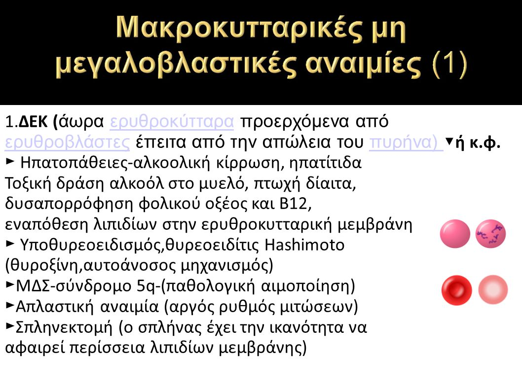 1.ΔΕΚ ( άωρα ερυθροκύτταρα προερχόμενα από ερυθροβλάστες έπειτα από την απώλεια του πυρήνα) ▼ ή κ.φ.ερυθροκύτταρα ερυθροβλάστεςπυρήνα) ► Ηπατοπάθειες-αλκοολική κίρρωση, ηπατίτιδα Τοξική δράση αλκοόλ στο μυελό, πτωχή δίαιτα, δυσαπορρόφηση φολικού οξέος και Β12, εναπόθεση λιπιδίων στην ερυθροκυτταρική μεμβράνη ► Υποθυρεοειδισμός,θυρεοειδίτις Hashimoto (θυροξίνη,αυτοάνοσος μηχανισμός) ► ΜΔΣ-σύνδρομο 5q-(παθολογική αιμοποίηση) ► Απλαστική αναιμία (αργός ρυθμός μιτώσεων) ► Σπληνεκτομή (ο σπλήνας έχει την ικανότητα να αφαιρεί περίσσεια λιπιδίων μεμβράνης)
