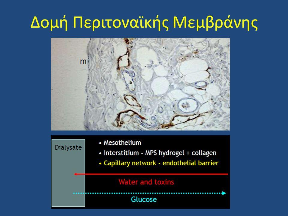 Δομή Περιτοναϊκής Μεμβράνης