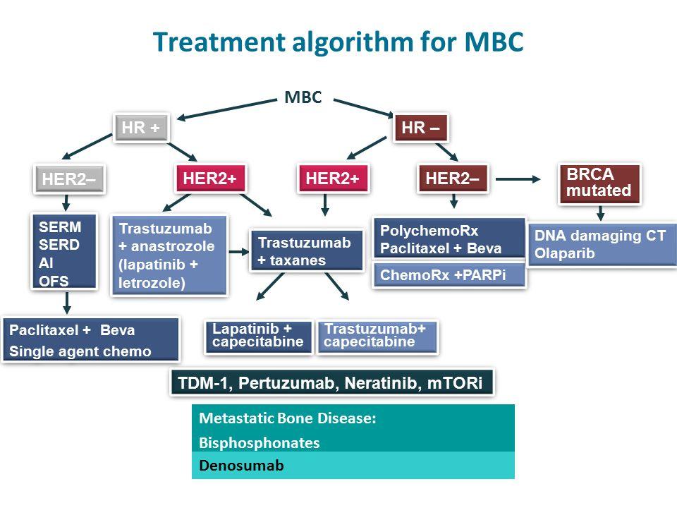 Treatment algorithm for MBC Trastuzumab + taxanes Trastuzumab + taxanes HER2+ SERM SERD AI OFS SERM SERD AI OFS HER2– Trastuzumab+ capecitabine Trastuzumab+ capecitabine HER2– HR – HR + MBC Trastuzumab + anastrozole (lapatinib + letrozole) Trastuzumab + anastrozole (lapatinib + letrozole) Lapatinib + capecitabine Lapatinib + capecitabine Paclitaxel + Beva Single agent chemo Paclitaxel + Beva Single agent chemo PolychemoRx Paclitaxel + Beva PolychemoRx Paclitaxel + Beva ChemoRx +PARPi Metastatic Bone Disease: Bisphosphonates Denosumab BRCA mutated BRCA mutated DNA damaging CT Olaparib DNA damaging CT Olaparib TDM-1, Pertuzumab, Neratinib, mTORi