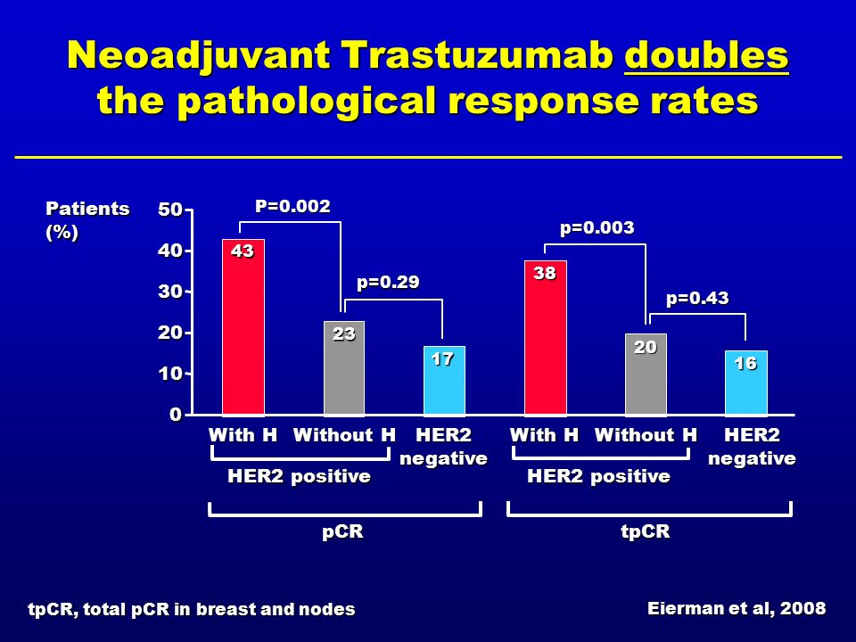 Neoadjuvant Trastuzumab doubles the pathological response rates 0 10 20 30 40 50 With H Without H HER2 negative With H Without H HER2 negative Patient