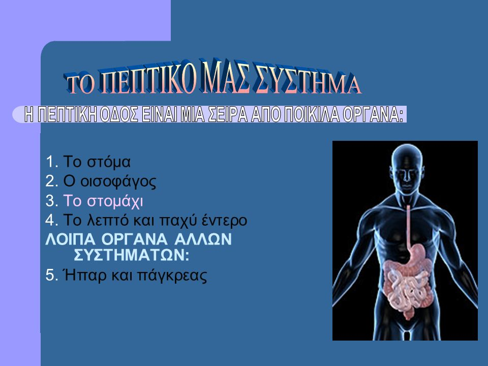1. Το στόμα 2. Ο οισοφάγος 3. Το στομάχι 4. Το λεπτό και παχύ έντερο ΛΟΙΠΑ ΟΡΓΑΝΑ ΑΛΛΩΝ ΣΥΣΤΗΜΑΤΩΝ: 5. Ήπαρ και πάγκρεας