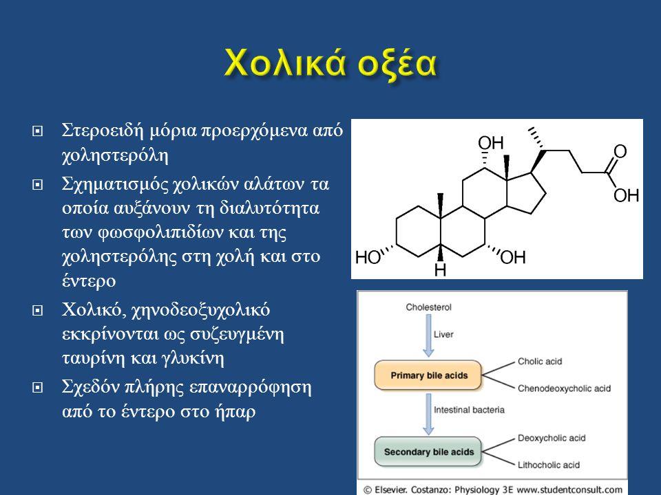  Στεροειδή μόρια προερχόμενα από χοληστερόλη  Σχηματισμός χολικών αλάτων τα οποία αυξάνουν τη διαλυτότητα των φωσφολιπιδίων και της χοληστερόλης στη χολή και στο έντερο  Χολικό, χηνοδεοξυχολικό εκκρίνονται ως συζευγμένη ταυρίνη και γλυκίνη  Σχεδόν πλήρης επαναρρόφηση από το έντερο στο ήπαρ