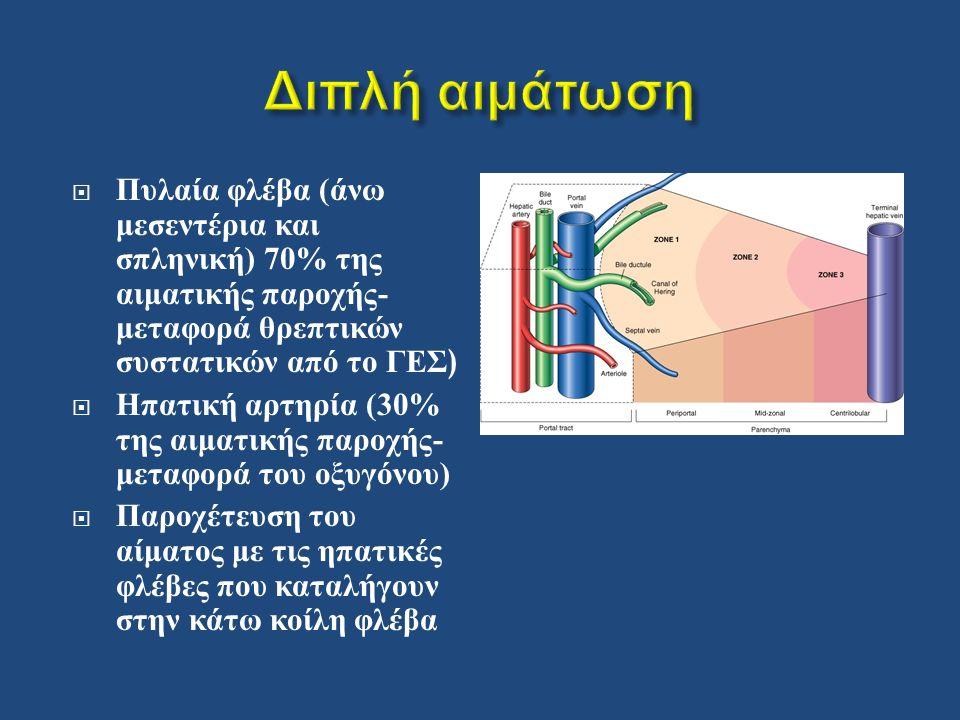  Πυλαία φλέβα ( άνω μεσεντέρια και σπληνική ) 70% της αιματικής παροχής - μεταφορά θρεπτικών συστατικών από το ΓΕΣ )  Ηπατική αρτηρία (30% της αιματικής παροχής - μεταφορά του οξυγόνου )  Παροχέτευση του αίματος με τις ηπατικές φλέβες που καταλήγουν στην κάτω κοίλη φλέβα