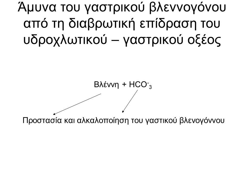 Άμυνα του γαστρικού βλεννογόνου από τη διαβρωτική επίδραση του υδροχλωτικού – γαστρικού οξέος Βλέννη + HCO - 3 Προστασία και αλκαλοποίηση του γαστικού βλενογόννου