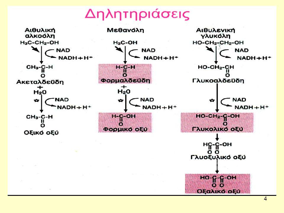 15 Η αλκοολική κετοξέωση Ακολουθεί επιταχυνόμενη λιπόλυση με συνέπεια απελευθέρωση λιπαρών οξέων και παραγωγή κετονών.