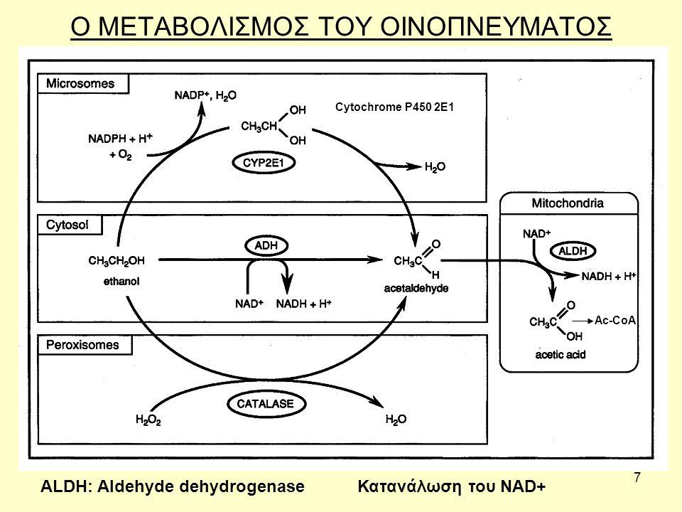 7 Ο ΜΕΤΑΒΟΛΙΣΜΟΣ ΤΟΥ ΟΙΝΟΠΝΕΥΜΑΤΟΣ Cytochrome P450 2E1 Ac-CoA ALDH: Aldehyde dehydrogenaseΚατανάλωση του NAD+