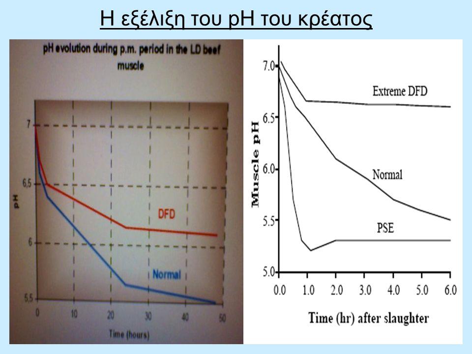 Η εξέλιξη του pH του κρέατος