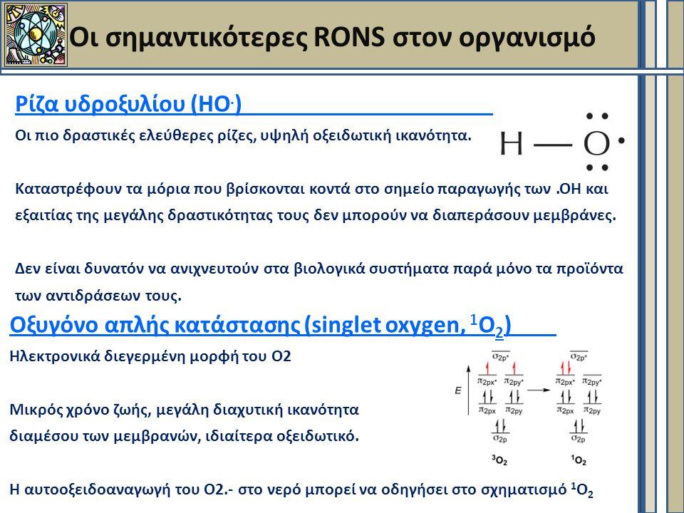Οι σημαντικότερες RONS στον οργανισμό Ρίζα υδροξυλίου (ΗΟ.