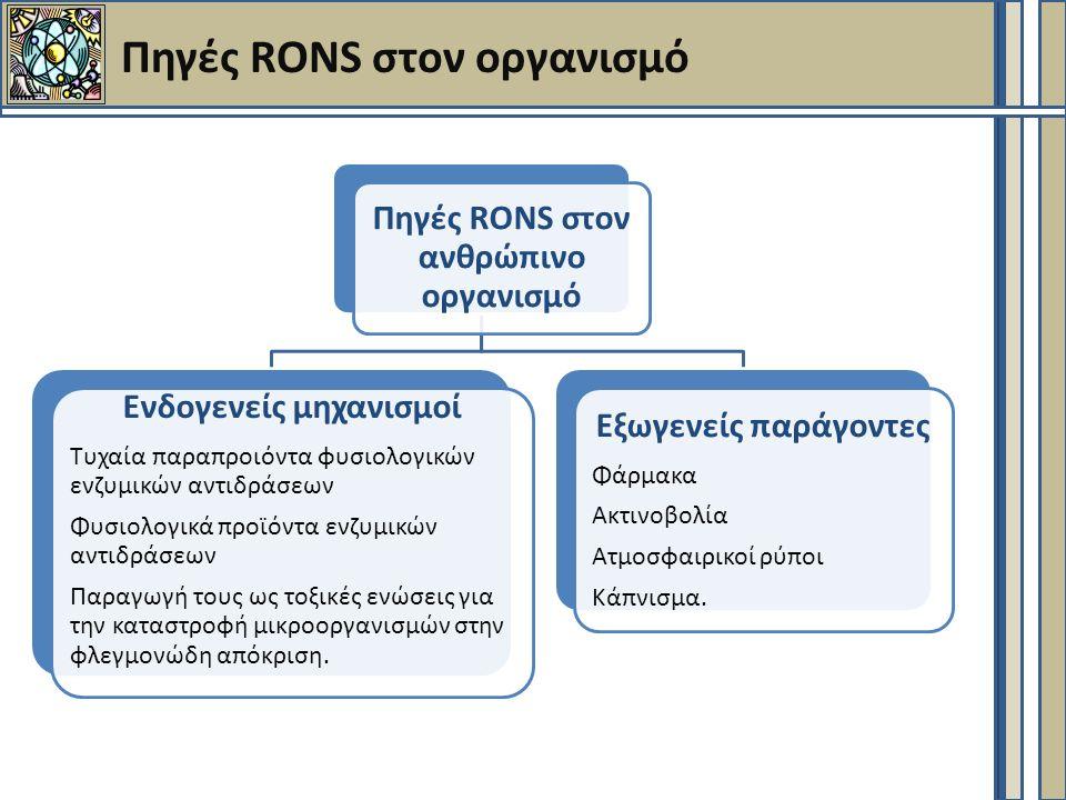 Πηγές RONS στον οργανισμό Πηγές RONS στον ανθρώπινο οργανισμό Ενδογενείς μηχανισμοί Τυχαία παραπροιόντα φυσιολογικών ενζυμικών αντιδράσεων Φυσιολογικά προϊόντα ενζυμικών αντιδράσεων Παραγωγή τους ως τοξικές ενώσεις για την καταστροφή μικροοργανισμών στην φλεγμονώδη απόκριση.
