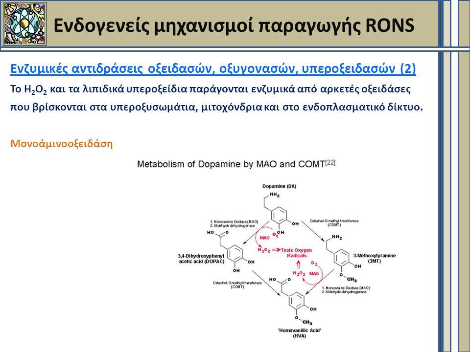 Ενδογενείς μηχανισμοί παραγωγής RONS Ενζυμικές αντιδράσεις οξειδασών, οξυγονασών, υπεροξειδασών (2) Το Η 2 Ο 2 και τα λιπιδικά υπεροξείδια παράγονται ενζυμικά από αρκετές οξειδάσες που βρίσκονται στα υπεροξυσωμάτια, μιτοχόνδρια και στο ενδοπλασματικό δίκτυο.