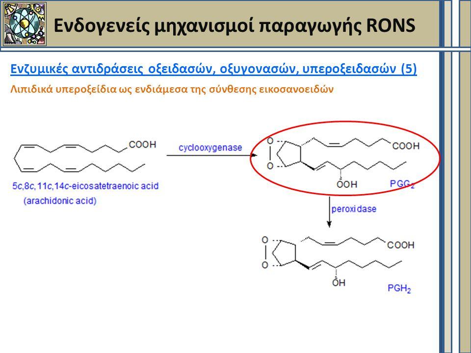 Ενδογενείς μηχανισμοί παραγωγής RONS Ενζυμικές αντιδράσεις οξειδασών, οξυγονασών, υπεροξειδασών (5) Λιπιδικά υπεροξείδια ως ενδιάμεσα της σύνθεσης εικοσανοειδών