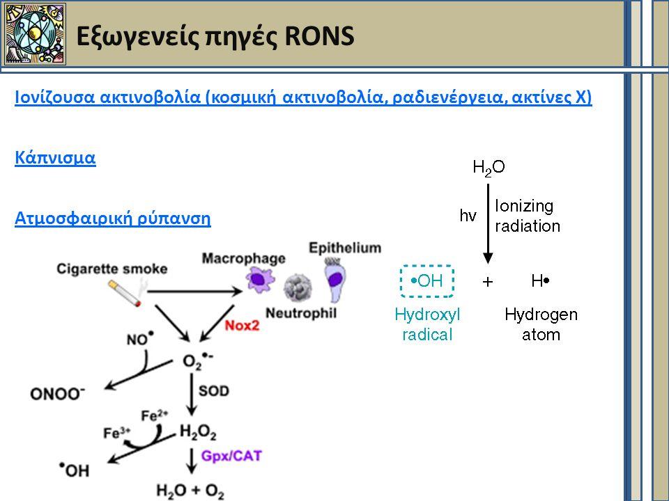 Εξωγενείς πηγές RONS Ιονίζουσα ακτινοβολία (κοσμική ακτινοβολία, ραδιενέργεια, ακτίνες Χ) Κάπνισμα Ατμοσφαιρική ρύπανση