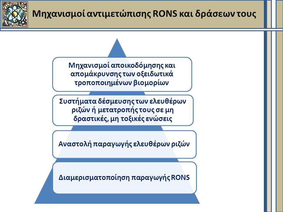 Μηχανισμοί αντιμετώπισης RONS και δράσεων τους Μηχανισμοί αποικοδόμησης και απομάκρυνσης των οξειδωτικά τροποποιημένων βιομορίων Συστήματα δέσμευσης των ελευθέρων ριζών ή μετατροπής τους σε μη δραστικές, μη τοξικές ενώσεις Αναστολή παραγωγής ελευθέρων ριζών Διαμερισματοποίηση παραγωγής RONS