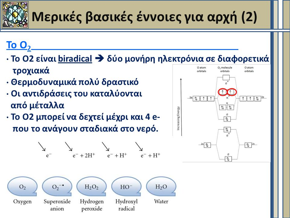 Μερικές βασικές έννοιες για αρχή (2) Το Ο 2 Το Ο2 είναι biradical  δύο μονήρη ηλεκτρόνια σε διαφορετικά τροχιακά Θερμοδυναμικά πολύ δραστικό Οι αντιδράσεις του καταλύονται από μέταλλα Το Ο2 μπορεί να δεχτεί μέχρι και 4 e- που το ανάγουν σταδιακά στο νερό.
