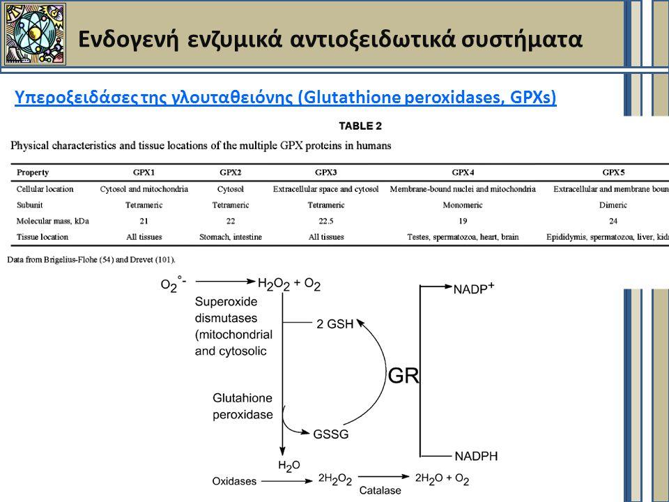 Ενδογενή ενζυμικά αντιοξειδωτικά συστήματα Υπεροξειδάσες της γλουταθειόνης (Glutathione peroxidases, GPXs)