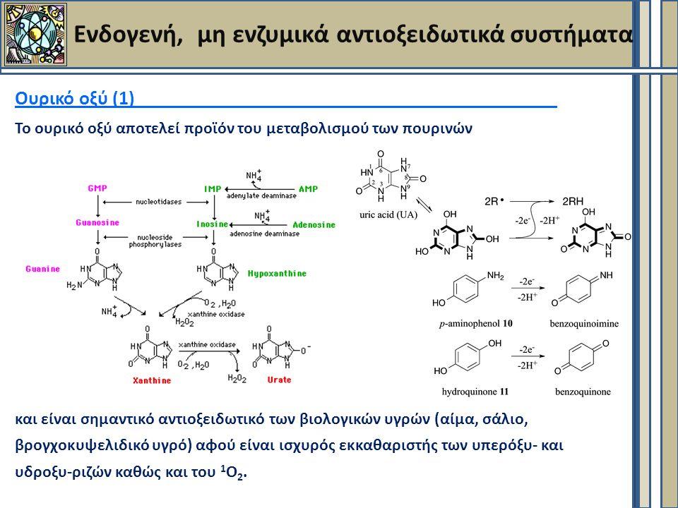 Ενδογενή, μη ενζυμικά αντιοξειδωτικά συστήματα Ουρικό οξύ (1) Το ουρικό οξύ αποτελεί προϊόν του μεταβολισμού των πουρινών και είναι σημαντικό αντιοξειδωτικό των βιολογικών υγρών (αίμα, σάλιο, βρογχοκυψελιδικό υγρό) αφού είναι ισχυρός εκκαθαριστής των υπερόξυ- και υδροξυ-ριζών καθώς και του 1 Ο 2.