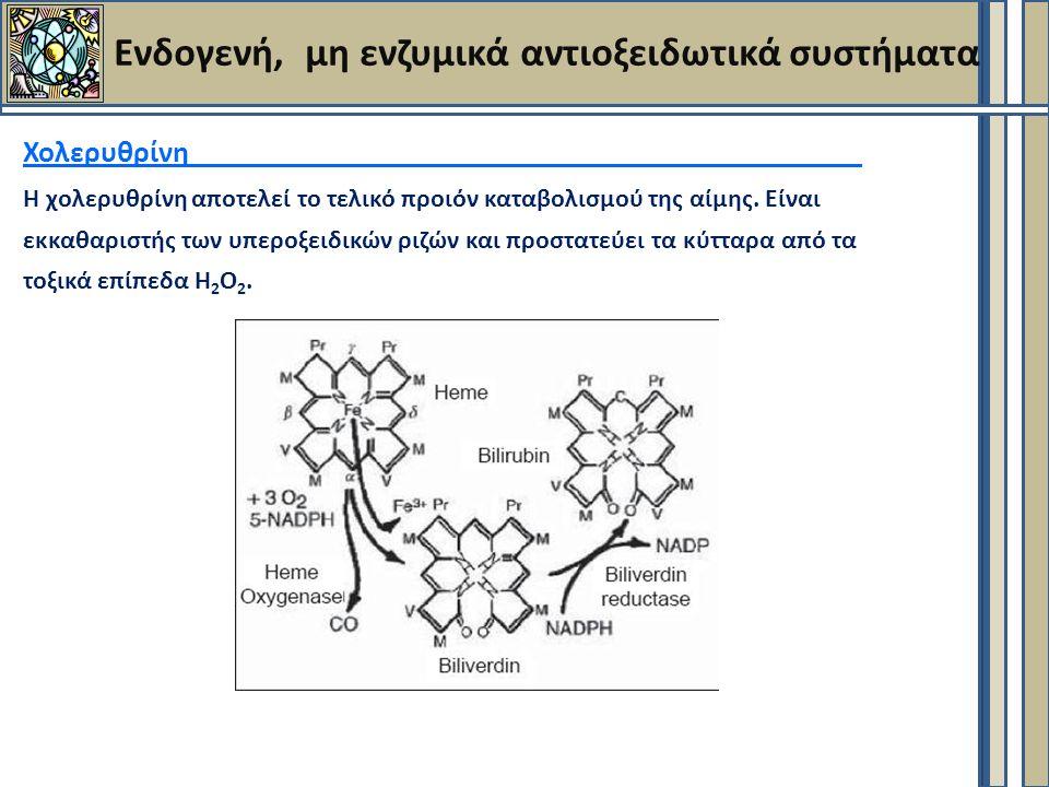 Ενδογενή, μη ενζυμικά αντιοξειδωτικά συστήματα Χολερυθρίνη Η χολερυθρίνη αποτελεί το τελικό προιόν καταβολισμού της αίμης.