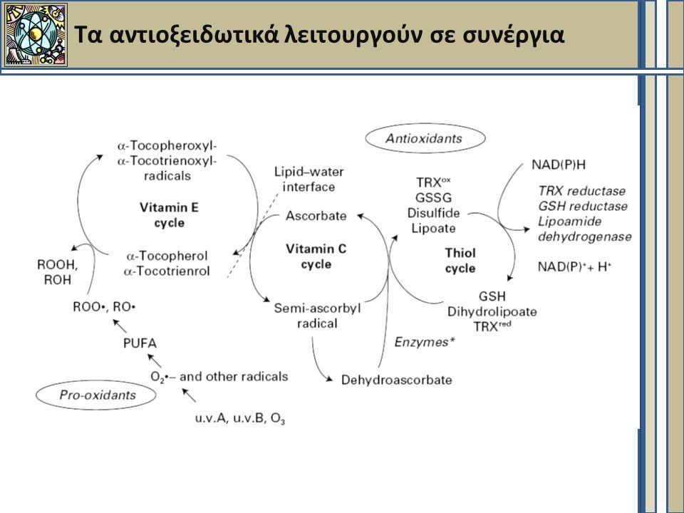 Τα αντιοξειδωτικά λειτουργούν σε συνέργια