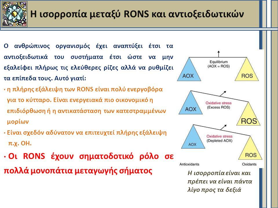 Η ισορροπία μεταξύ RONS και αντιοξειδωτικών Ο ανθρώπινος οργανισμός έχει αναπτύξει έτσι τα αντιοξειδωτικά του συστήματα έτσι ώστε να μην εξαλείφει πλήρως τις ελεύθερες ρίζες αλλά να ρυθμίζει τα επίπεδα τους.