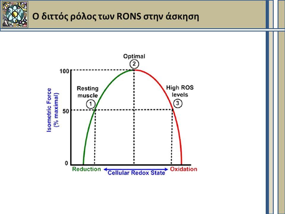 Ο διττός ρόλος των RONS στην άσκηση