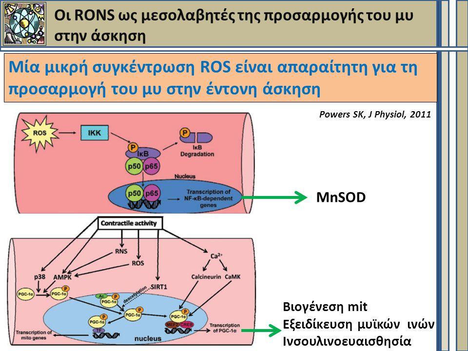 Οι RONS ως μεσολαβητές της προσαρμογής του μυ στην άσκηση Μία μικρή συγκέντρωση ROS είναι απαραίτητη για τη προσαρμογή του μυ στην έντονη άσκηση MnSOD Βιογένεση mit Εξειδίκευση μυϊκών ινών Ινσουλινοευαισθησία Powers SK, J Physiol, 2011