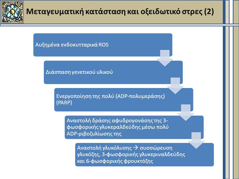 Μεταγευματική κατάσταση και οξειδωτικό στρες (2) Αυξημένα ενδοκυτταρικά ROSΔιάσπαση γενετικού υλικού Ενεργοποίηση της πολύ (ADP- πολυμεράσης) (PARP) Αναστολή δράσης αφυδρογονάσης της 3- φωσφορικής γλυκεραλδεύδης μέσω πολύ ADP-ριβοζυλίωσης της Αναστολή γλυκόλυσης  συσσώρευση γλυκόζης, 3-φωσφορικής γλυκεριναλδεύδης και 6-φωσφορικής φρουκτόζης
