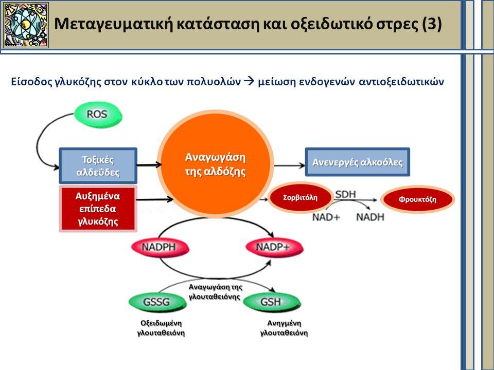 Μεταγευματική κατάσταση και οξειδωτικό στρες (3) Είσοδος γλυκόζης στον κύκλο των πολυολών  μείωση ενδογενών αντιοξειδωτικών