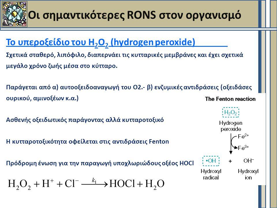Οι σημαντικότερες RONS στον οργανισμό Το υπεροξείδιο του Η 2 Ο 2 (hydrogen peroxide) Σχετικά σταθερό, λιπόφιλο, διαπερνάει τις κυτταρικές μεμβράνες και έχει σχετικά μεγάλο χρόνο ζωής μέσα στο κύτταρο.