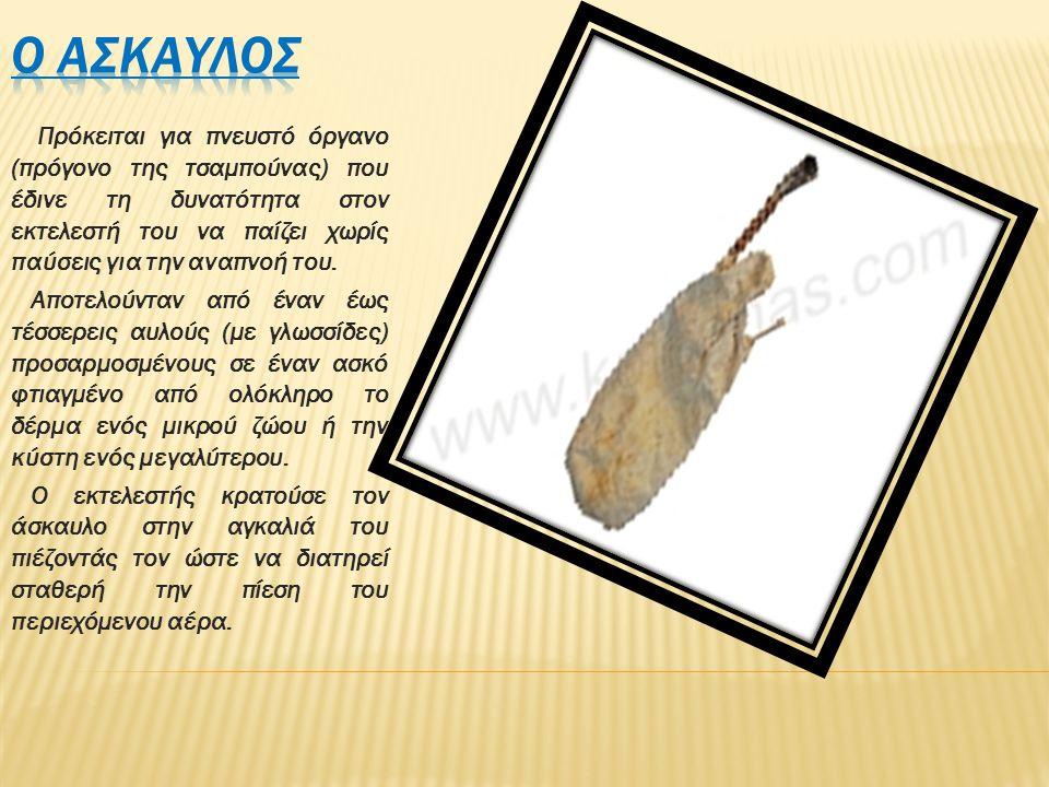Πρόκειται για πνευστό όργανο (πρόγονο της τσαμπούνας) που έδινε τη δυνατότητα στον εκτελεστή του να παίζει χωρίς παύσεις για την αναπνοή του. Αποτελού