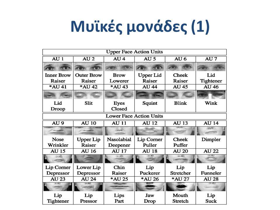 Μυϊκές μονάδες (1)