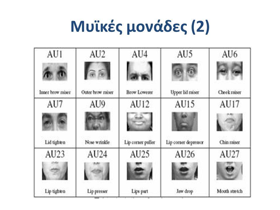 Μυϊκές μονάδες (2)