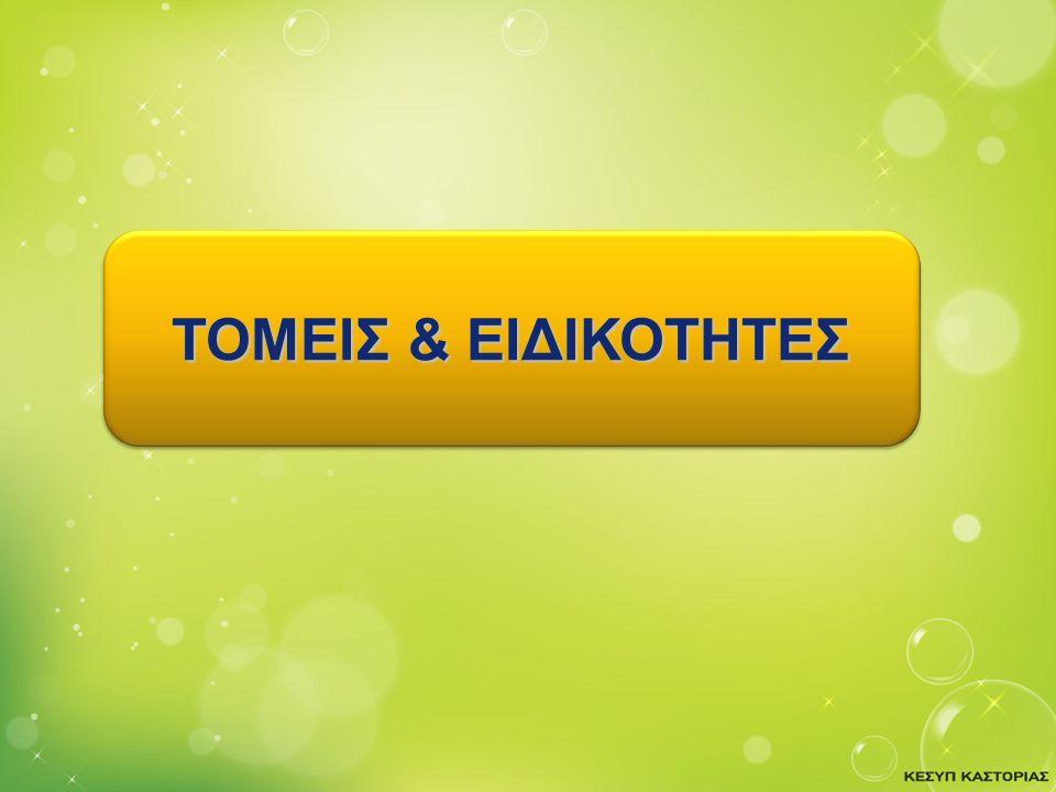 Company LOGO ΤΟΜΕΙΣ & ΕΙΔΙΚΟΤΗΤΕΣ