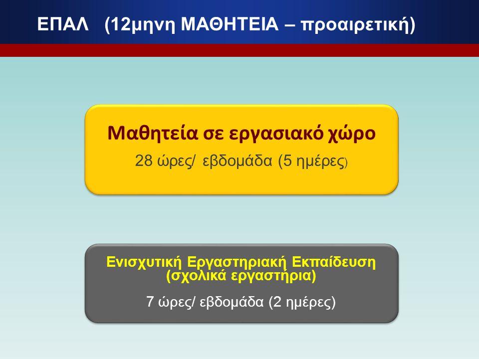 ΕΠΑΛ (12μηνη ΜΑΘΗΤΕΙΑ – προαιρετική) Μαθητεία σε εργασιακό χώρο 28 ώρες/ εβδομάδα (5 ημέρες ) Μαθητεία σε εργασιακό χώρο 28 ώρες/ εβδομάδα (5 ημέρες )