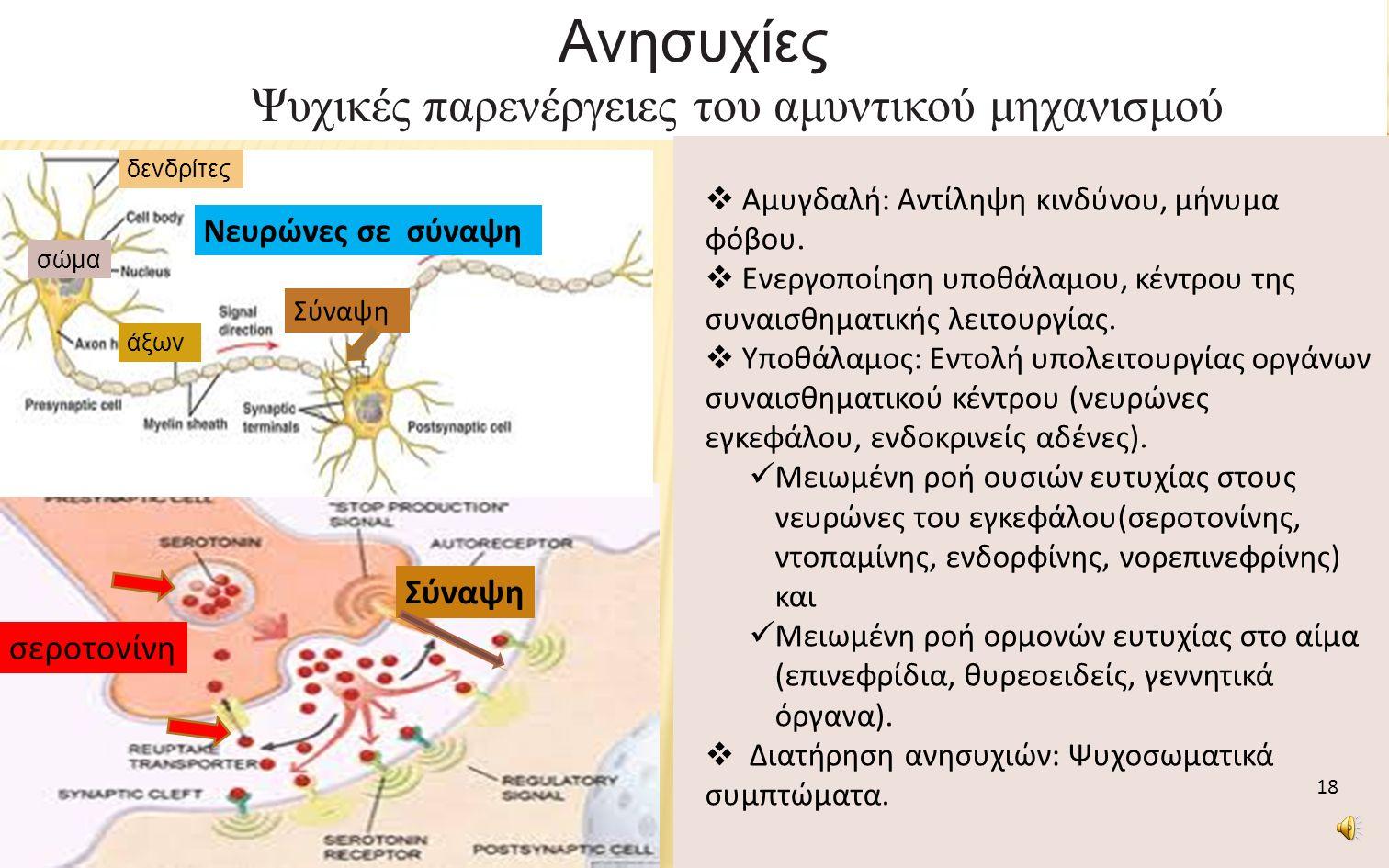 Ανησυχίες Ψυχικές παρενέργειες του αμυντικού μηχανισμού Σύναψη νευρώνας Σύναψη σεροτονίνη  Αμυγδαλή: Αντίληψη κινδύνου, μήνυμα φόβου.