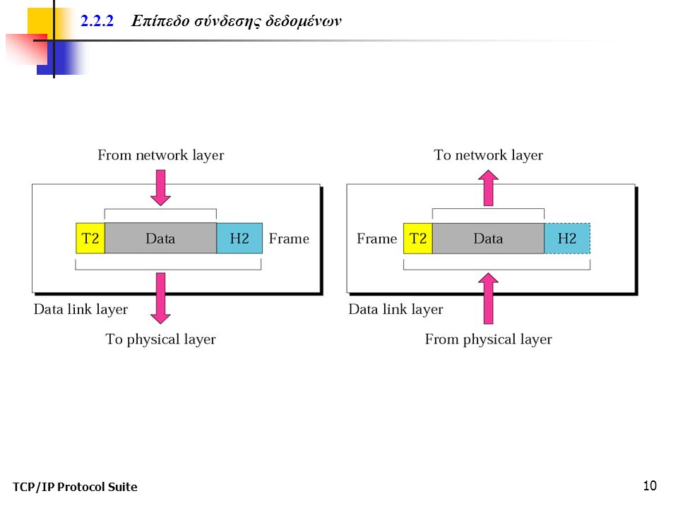 TCP/IP Protocol Suite 10 2.2.2 Επίπεδο σύνδεσης δεδομένων