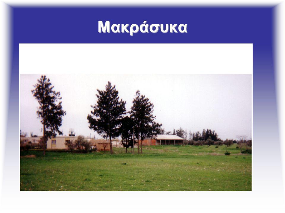 Μακράσυκα