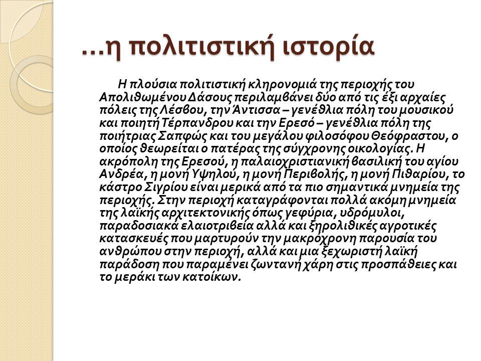 … η πολιτιστική ιστορία Η πλούσια πολιτιστική κληρονομιά της περιοχής του Απολιθωμένου Δάσους περιλαμβάνει δύο από τις έξι αρχαίες πόλεις της Λέσβου, την Άντισσα – γενέθλια πόλη του μουσικού και ποιητή Τέρπανδρου και την Ερεσό – γενέθλια πόλη της ποιήτριας Σαπφώς και του μεγάλου φιλοσόφου Θεόφραστου, ο οποίος θεωρείται ο πατέρας της σύγχρονης οικολογίας.
