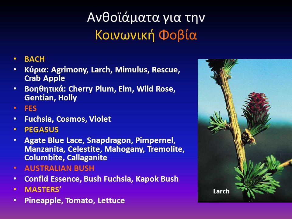 Ανθοϊάματα για την Κοινωνική Φοβία BACH Κύρια: Agrimony, Larch, Mimulus, Rescue, Crab Apple Βοηθητικά: Cherry Plum, Elm, Wild Rose, Gentian, Holly FES