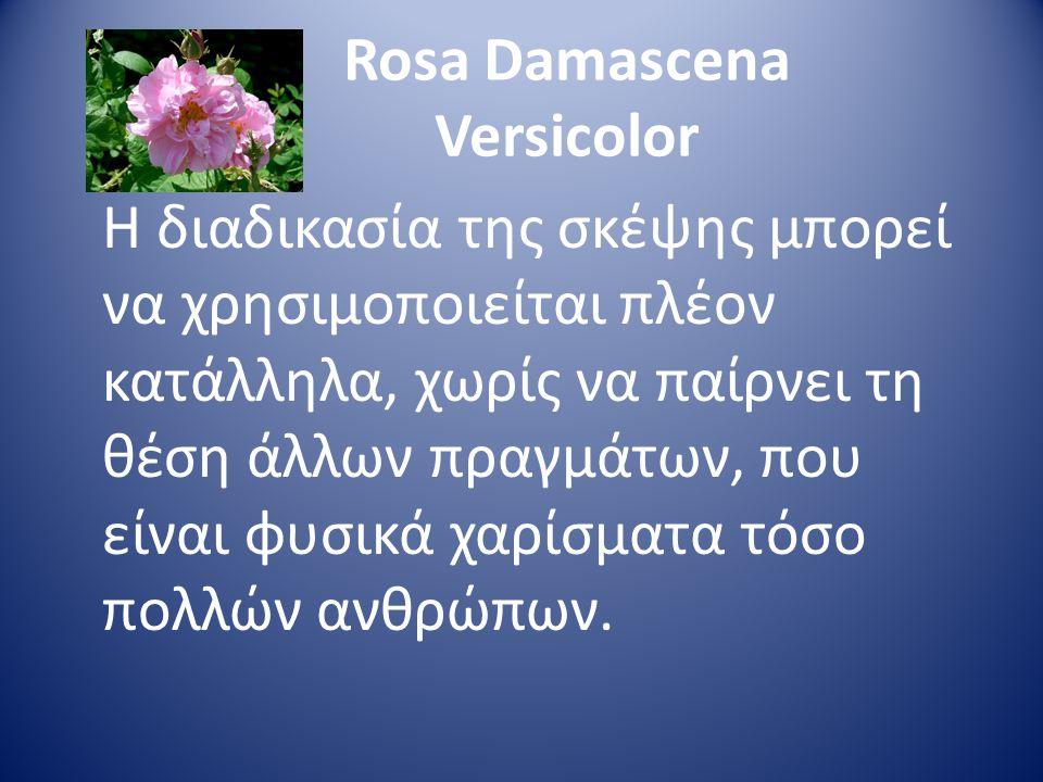 Rosa Damascena Versicolor Η διαδικασία της σκέψης μπορεί να χρησιμοποιείται πλέον κατάλληλα, χωρίς να παίρνει τη θέση άλλων πραγμάτων, που είναι φυσικ