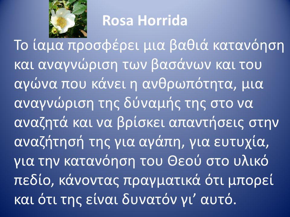 Rosa Horrida Το ίαμα προσφέρει μια βαθιά κατανόηση και αναγνώριση των βασάνων και του αγώνα που κάνει η ανθρωπότητα, μια αναγνώριση της δύναμής της στ