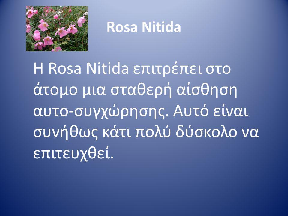 Rosa Nitida Η Rosa Nitida επιτρέπει στο άτομο μια σταθερή αίσθηση αυτο-συγχώρησης. Αυτό είναι συνήθως κάτι πολύ δύσκολο να επιτευχθεί.