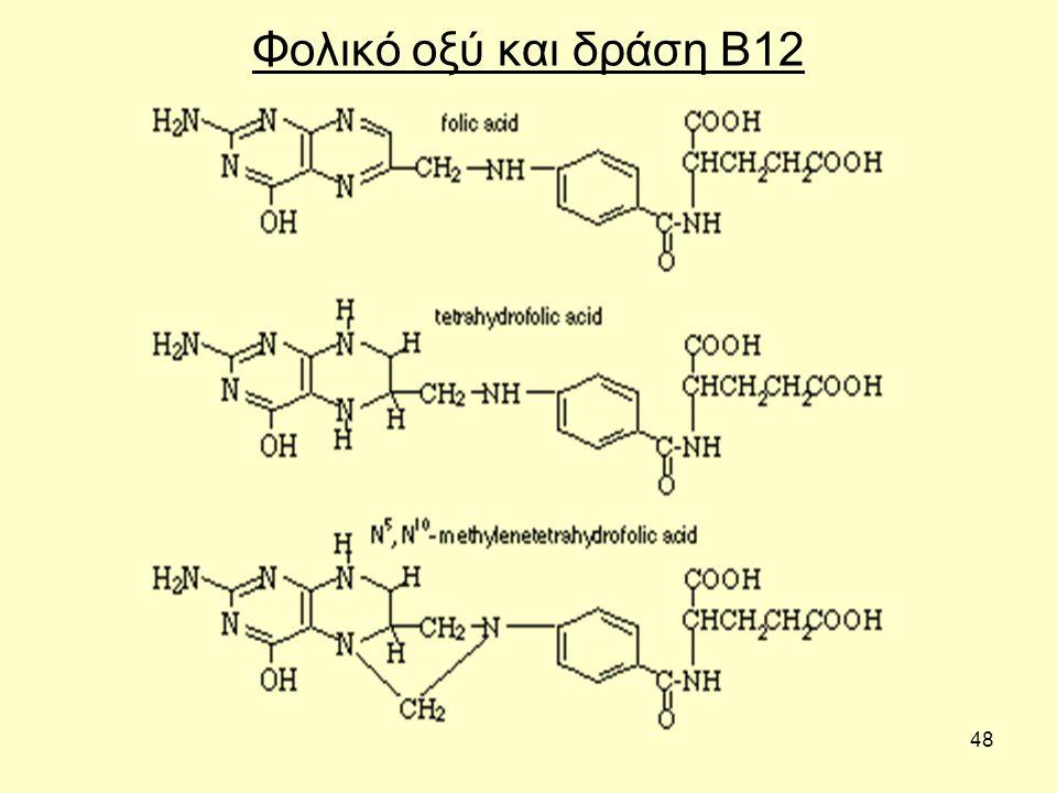 48 Φολικό οξύ και δράση Β12
