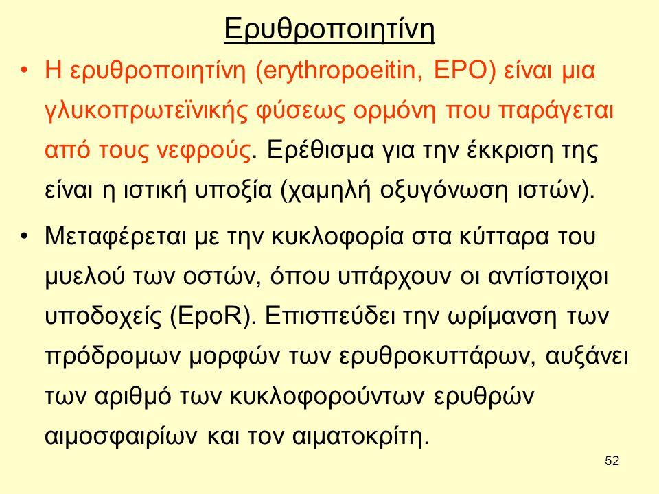 52 Ερυθροποιητίνη Η ερυθροποιητίνη (erythropoeitin, EPO) είναι μια γλυκοπρωτεϊνικής φύσεως ορμόνη που παράγεται από τους νεφρούς. Ερέθισμα για την έκκ