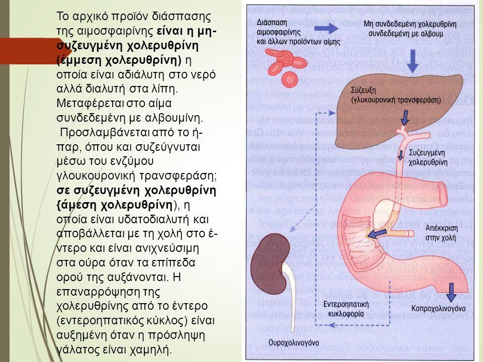Το αρχικό προϊόν διάσπασης της αιμοσφαιρίνης είναι η μη- συζευγμένη χολερυθρίνη (έμμεση χολερυθρίνη) η οποία είναι αδιάλυτη στο νερό αλλά διαλυτή στα