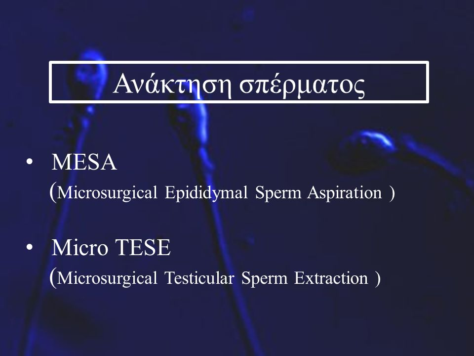 Ανάκτηση σπέρματος MESA ( Microsurgical Epididymal Sperm Aspiration ) Micro TESE ( Microsurgical Testicular Sperm Extraction )