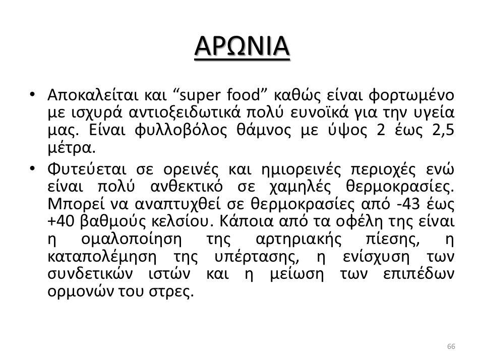 """ΑΡΩΝΙΑ Αποκαλείται και """"super food"""" καθώς είναι φορτωμένο με ισχυρά αντιοξειδωτικά πολύ ευνοϊκά για την υγεία μας. Είναι φυλλοβόλος θάμνος με ύψος 2 έ"""