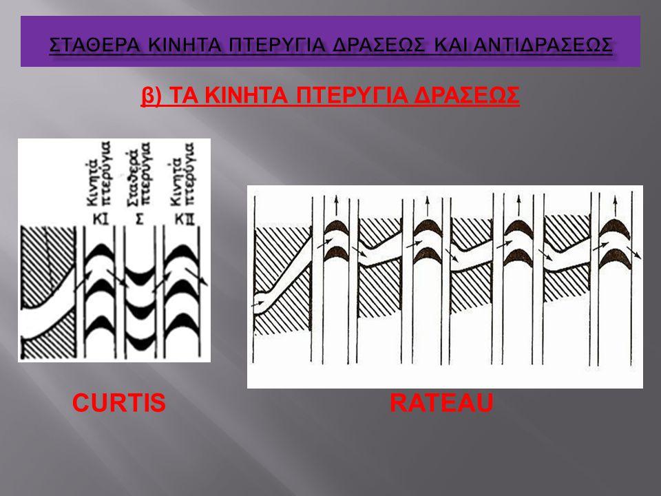 β) ΤΑ ΚΙΝΗΤΑ ΠΤΕΡΥΓΙΑ ΔΡΑΣΕΩΣ RATEAUCURTIS