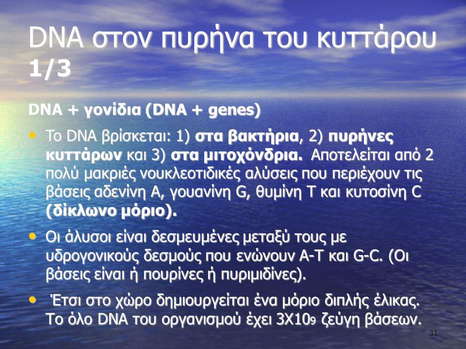 DNA στον πυρήνα του κυττάρου 1/3 DNA + γονίδια (DNA + genes) To DNA βρίσκεται: 1) στα βακτήρια, 2) πυρήνες κυττάρων και 3) στα μιτοχόνδρια.