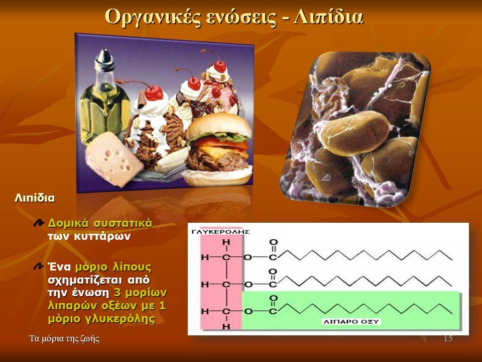 Τα μόρια της ζωής15 Λιπίδια Δομικά συστατικά Δομικά συστατικά των κυττάρων μόριο λίπους σχηματίζεται από την ένωση3 μορίων λιπαρών οξέων με 1 μόριο γλυκερόλης Ένα μόριο λίπους σχηματίζεται από την ένωση 3 μορίων λιπαρών οξέων με 1 μόριο γλυκερόλης Οργανικές ενώσεις - Λιπίδια